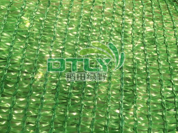 绿色三针网